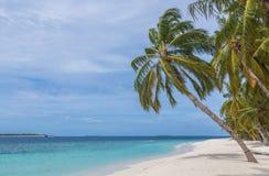 Пристаньте к берегу с островом Мальдивами атолла Raa Meedhoo ладони стоковая фотография rf