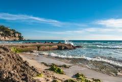 Пристаньте к берегу с algas на побережье в Майорке на бурный день Стоковая Фотография RF