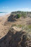 Пристаньте песчанную дюну к берегу на солнечный день в национальном парке Coorong, южном Aus Стоковые Изображения