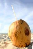 пристаньте питье к берегу кокоса Стоковые Изображения