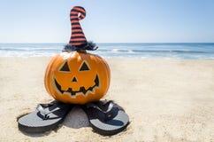 Пристаньте предпосылку к берегу хеллоуина с тыквой в шляпах ` s ведьмы стоковая фотография rf