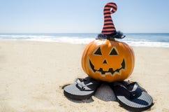 Пристаньте предпосылку к берегу хеллоуина с тыквой в шляпах ` s ведьмы стоковое фото
