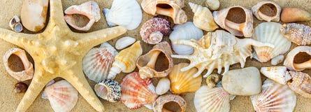 пристаньте прибой к берегу лета камней песка Кипра свободного полета среднеземноморской близкий seashell песка вверх Стоковое Изображение RF
