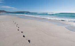 пристаньте следы ноги к берегу горизонтальные Стоковая Фотография