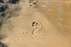 пристаньте следы ноги к берегу Стоковые Изображения RF
