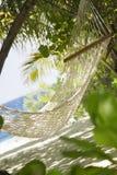 пристаньте тропическое к берегу Стоковая Фотография RF