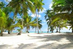 пристаньте caribbean к берегу Стоковое Изображение