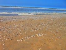 пристаньте seashells к берегу Стоковые Фотографии RF