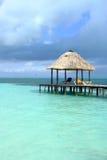 Пристань берега океана стоковое фото