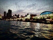 Пристань военно-морского флота Chicagos стоковые изображения rf