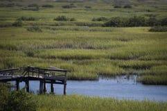 Пристань и болото в StAugustine, Флориде Стоковые Изображения