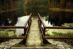 Пристань на лесе озера Стоковые Изображения