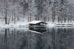 Пристань на озере Alpsee в зимнем времени Германия Стоковая Фотография