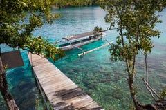 Пристань океана длинного хвоста фото естественной деревянной припаркованная шлюпкой карибская голубая ясная вода горизонтально Стоковые Фотографии RF