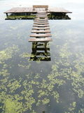 Пристань пруда Стоковые Фотографии RF