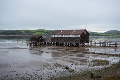 Пристань старта шлюпки во время отлива Стоковая Фотография RF