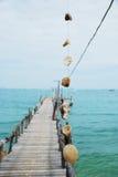 пристань clam близкая вверх по деревянному Стоковое Изображение