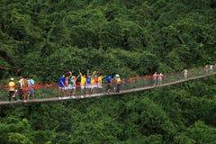 Пристань Forest Park рая Sanya тропическая Стоковое Изображение