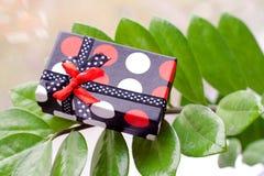 Присутствующая коробка на зеленых листьях Стоковое Изображение RF