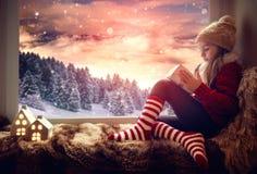Присутствующий ландшафт зимы Стоковое Изображение RF