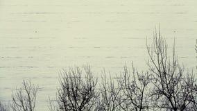 Притяжка китайца снежка Стоковые Изображения RF