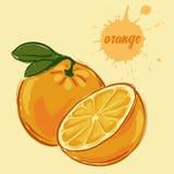 Притяжка руки апельсина иллюстрация штока