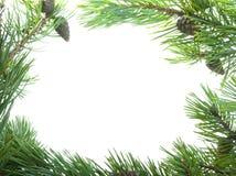 приукрашивание cristmas Стоковые Фотографии RF