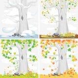 приурочивает год сезоны Пейзаж с деревом клена Стоковые Фотографии RF