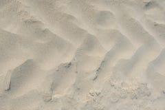 Прифронтовой конец вверх следов автошины трактора на песке пляжа над миндалинами раскосно сразу произведите эффект изображение за Стоковое Фото