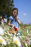 приходит весна стоковое фото rf