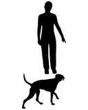 приходит тренировка повиновению собаки команды Стоковое Изображение RF