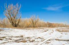 приходя зима весны ландшафта скоро Стоковые Фото