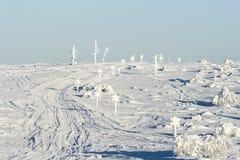 Приходить следов катания на лыжах покатый Стоковые Фото