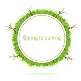 приходя весна Стоковая Фотография