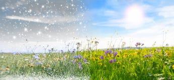 приходя весна Стоковое фото RF