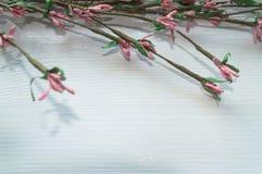 приходя весна Стоковые Фотографии RF