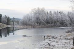 приходя зима Стоковые Фотографии RF