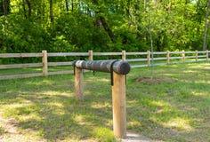 Прицепляя столб в древесинах Стоковые Изображения RF
