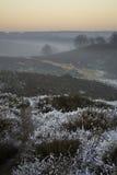 причалите над зимой места стоковое изображение rf