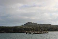 Причал Rangitoto, залив Hauraki, Окленд Стоковое Изображение RF