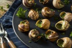 Причудливая французская горячая закуска Escargot Стоковое фото RF