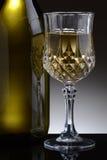 Причудливое стекло белого вина Стоковое Фото
