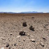 Причудливые картины пустыни стоковое фото
