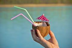 Причудливое питье кокоса Стоковые Изображения