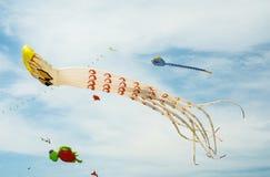 Причудливые змеи в осьминоге сформировали на пасмурном голубом небе Стоковые Фото