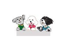 Причудливые собаки Стоковое Фото
