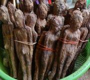 Причудливый плодоовощ, подшипник дерева приносить в форме женщин и человека Стоковая Фотография RF