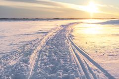 пришел заход солнца тумана вверх по зиме стоковое фото rf