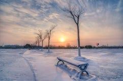 пришел заход солнца тумана вверх по зиме Стоковая Фотография
