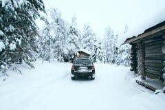 Пришл к лесу зимы стоковые изображения